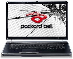 замена матрицы ноутбука Packard Bell в Петербурге